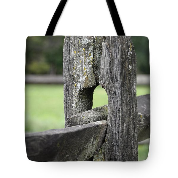 Simplicity Tote Bag by Lisa  Phillips