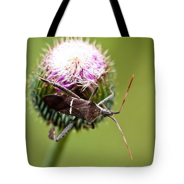 Simplistic Wonder Tote Bag by Charles Dobbs
