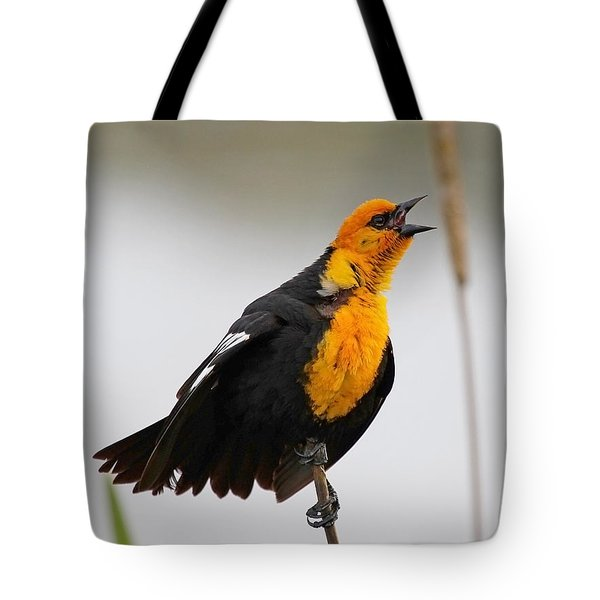 Sing A Song Tote Bag by Athena Mckinzie