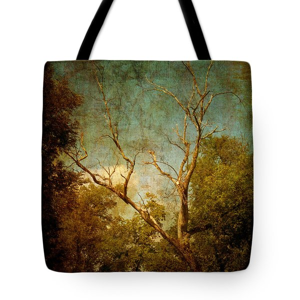 Sing No Sad Songs For Me Tote Bag by Roman Solar