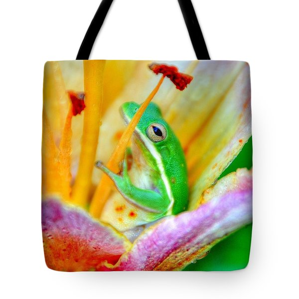 Sit A Spell Tote Bag by Charlotte Schafer