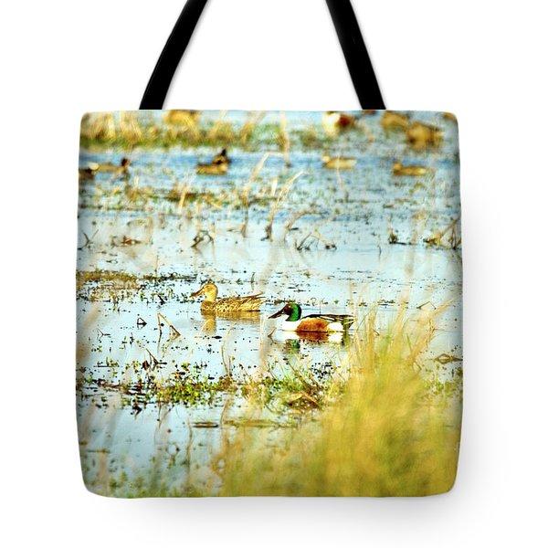 Sitting Ducks Tote Bag by Scott Pellegrin