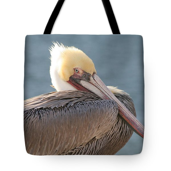 Sitting Pretty Pelican Tote Bag by Bob and Jan Shriner