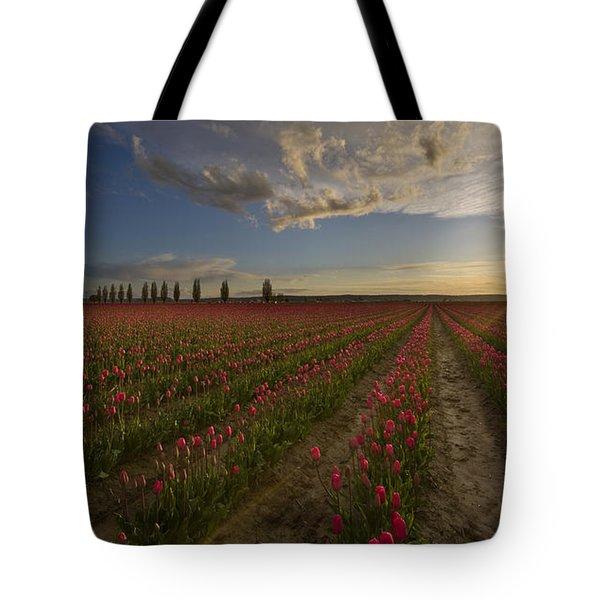 Skagit Tulip Fields Sunset Tote Bag by Mike Reid
