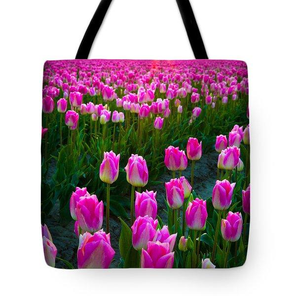 Skagit Valley Dawn Tote Bag by Inge Johnsson