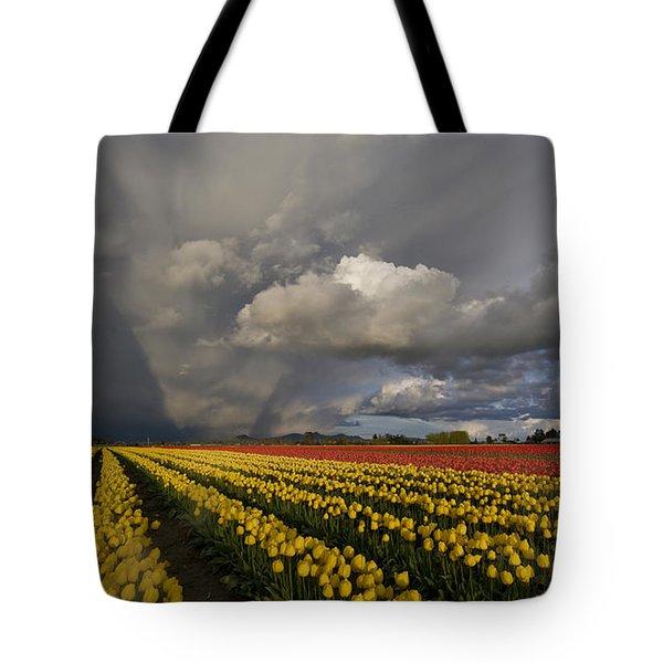 Skagit Valley Storm Tote Bag by Mike Reid