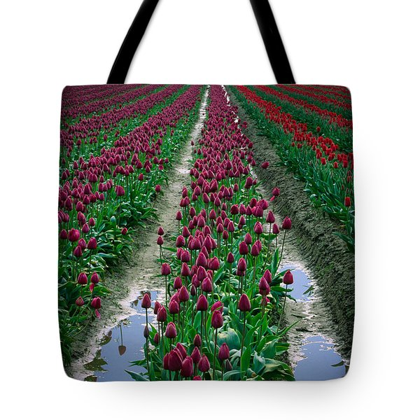 Skagit Valley Tulips Tote Bag by Inge Johnsson