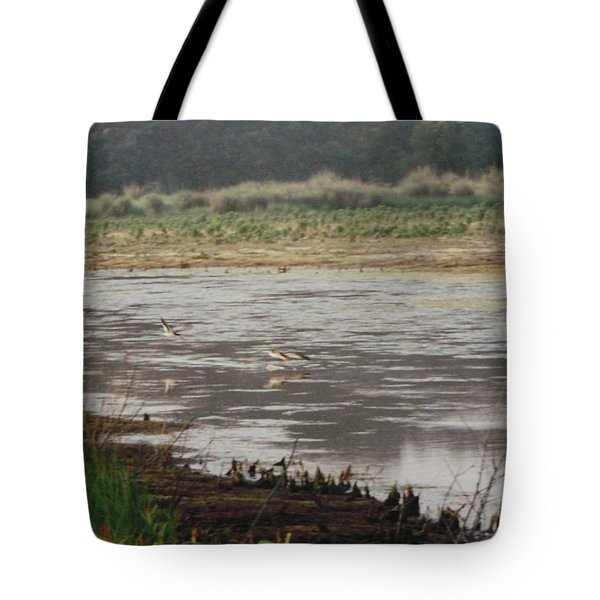 Skimmers On Assateague Tote Bag by Joann Renner