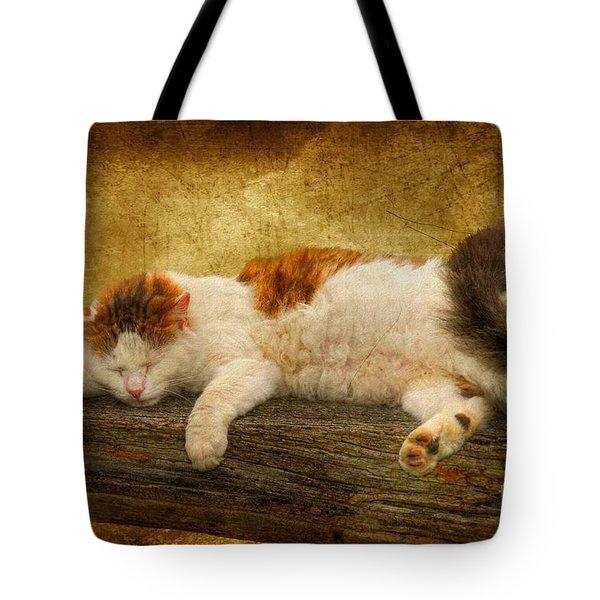Sleepy Kitty Tote Bag by Lois Bryan