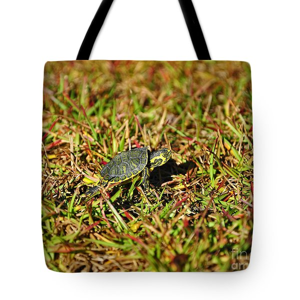 Slider To Go Tote Bag by Al Powell Photography USA