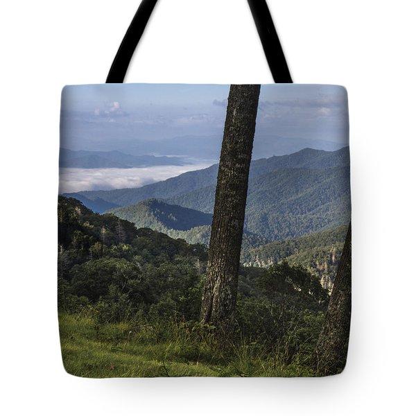 Smokey Mountain View Tote Bag by John McGraw