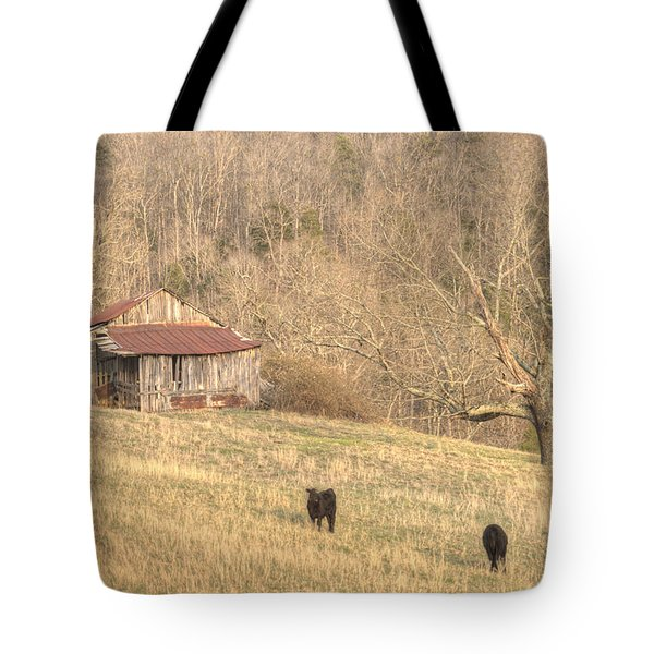 Smoky Mountain Barn 8 Tote Bag by Douglas Barnett