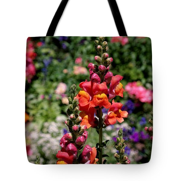 Snapdragons Tote Bag by Rona Black