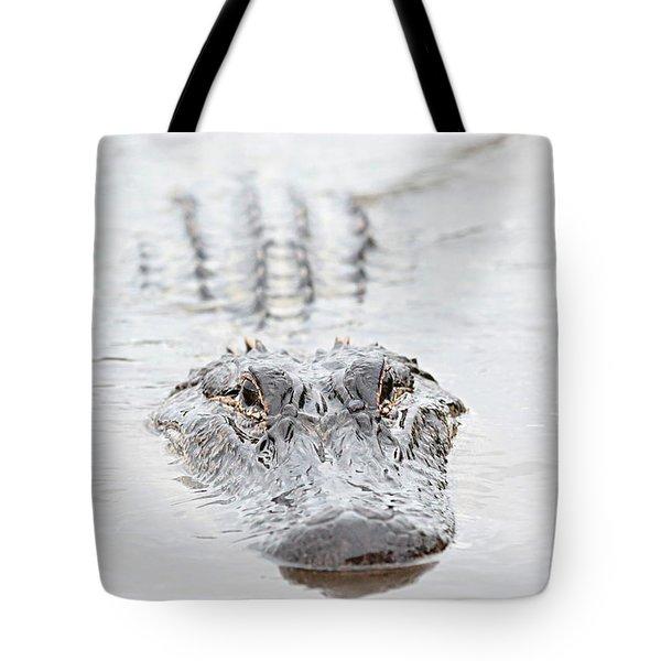 Sneaky Swamp Gator Tote Bag by Carol Groenen