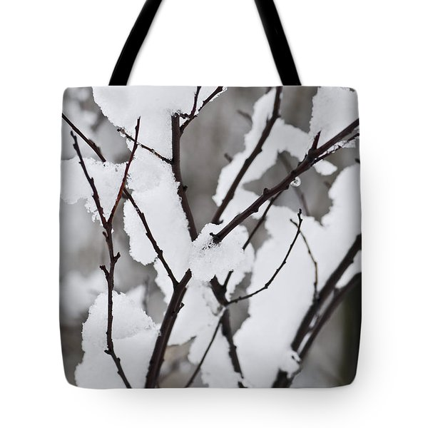 Snow covered branches Tote Bag by Elena Elisseeva
