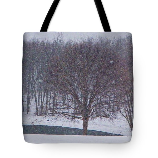 Snow Day Tote Bag by Chris Berry