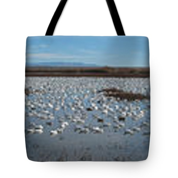 Snow Geese Bosque Tote Bag by Steven Ralser