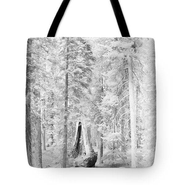 Snow Impressions Tote Bag by Angela Stanton