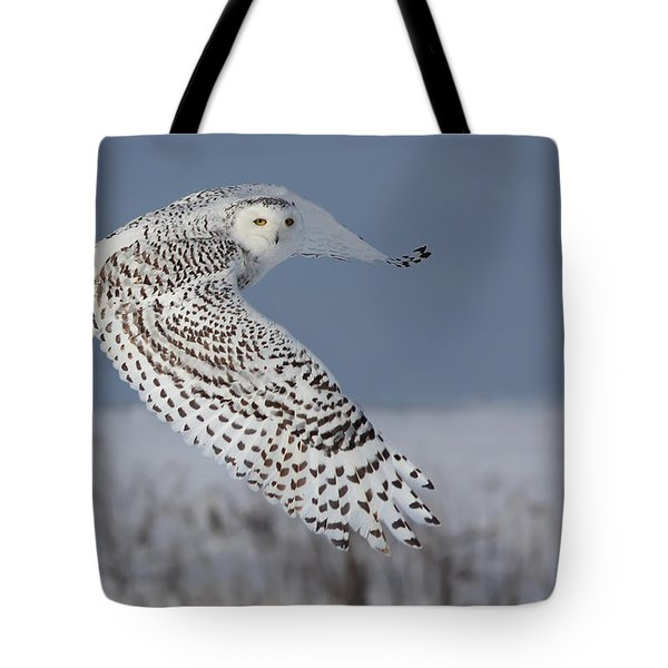 Snowy In Action Tote Bag by Mircea Costina Photography