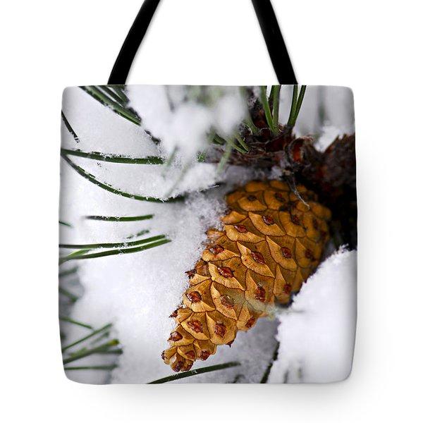 Snowy Pine Cone Tote Bag by Elena Elisseeva