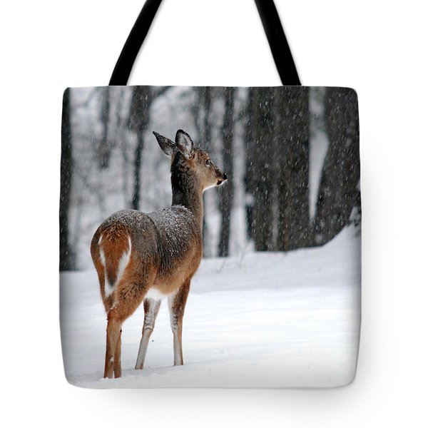 Snowy White-Tail Tote Bag by Christina Rollo