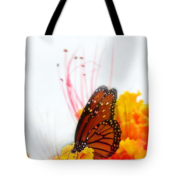 Soft Embrace Tote Bag by Kume Bryant