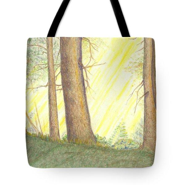 Soft Light Tote Bag by Lew Davis