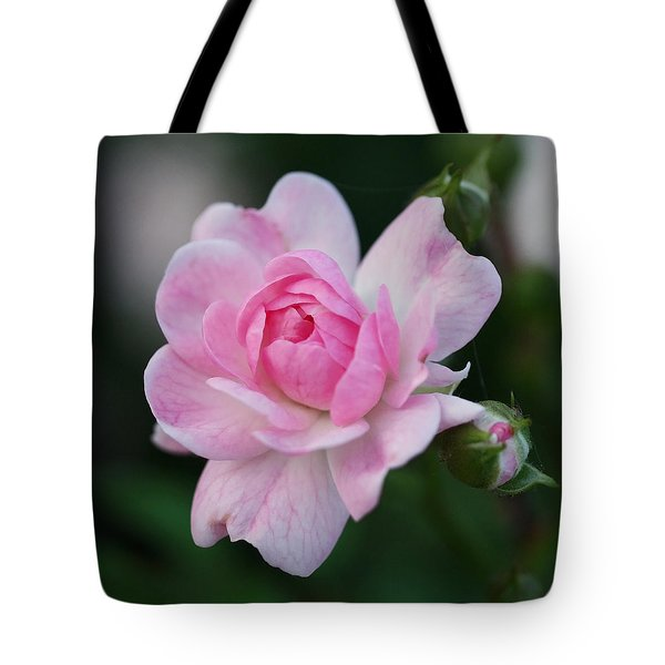 Soft Pink Miniature Rose Tote Bag by Rona Black