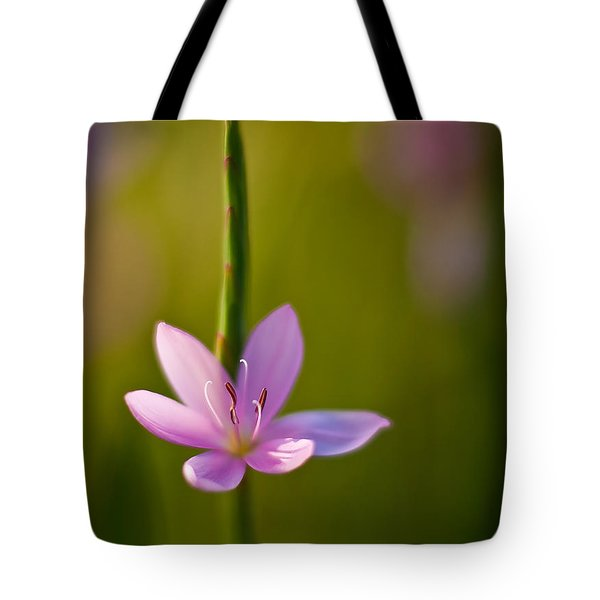 Solo Crocus Tote Bag by Mike Reid