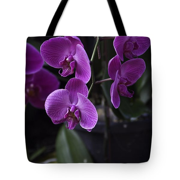 Some Very Beautiful Purple Colored Orchid Flowers Inside The Jurong Bird Park Tote Bag by Ashish Agarwal