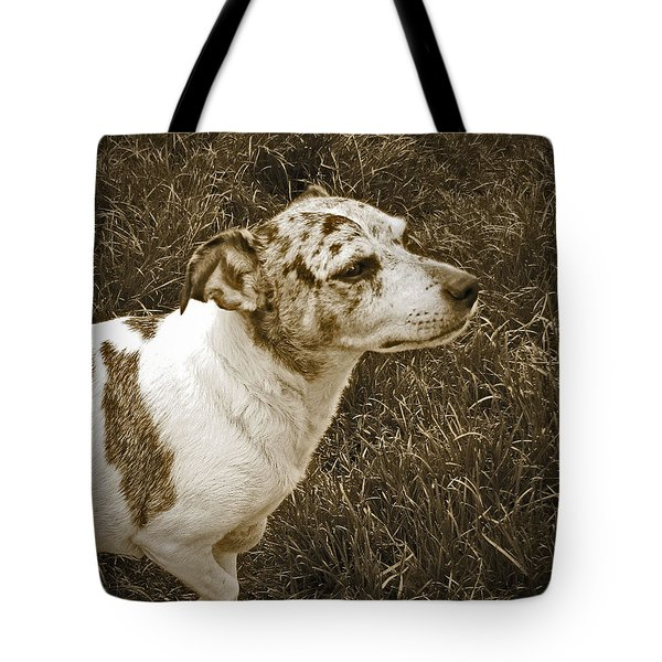 Something In The Air Tote Bag by Adri Turner