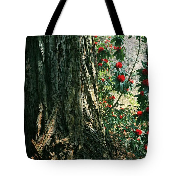 Sometimes Life Is Sweet Tote Bag by Laurie Search