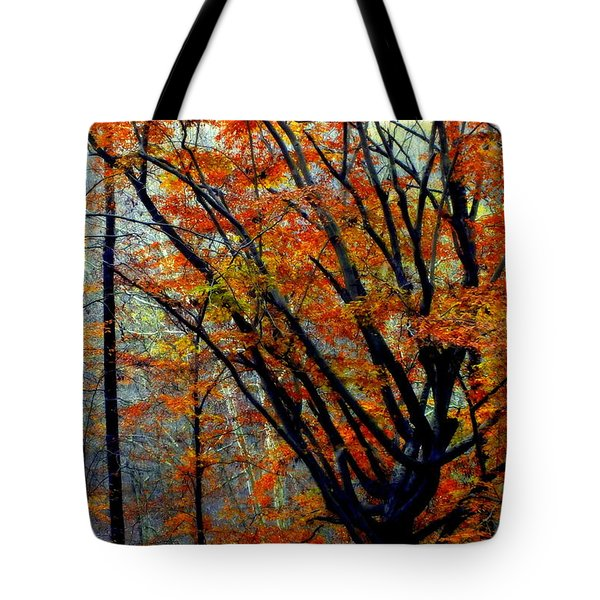 Song Of Autumn Tote Bag by Karen Wiles