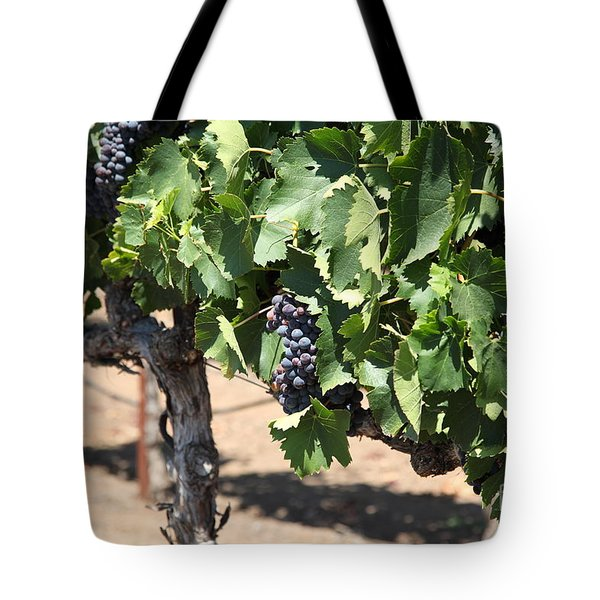Sonoma Vineyards In The Sonoma California Wine Country 5d24488 Tote Bag by Wingsdomain Art and Photography