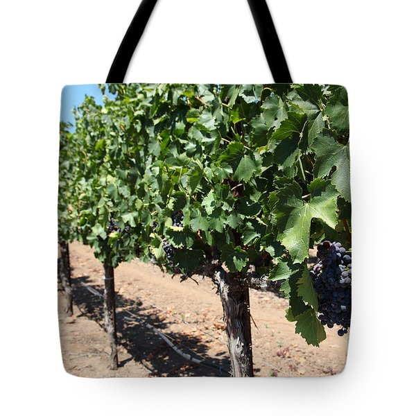 Sonoma Vineyards In The Sonoma California Wine Country 5d24491 Tote Bag by Wingsdomain Art and Photography