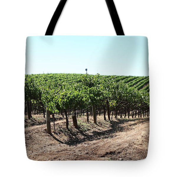 Sonoma Vineyards In The Sonoma California Wine Country 5d24598 Tote Bag by Wingsdomain Art and Photography