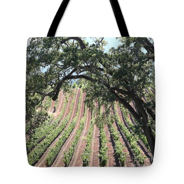 Sonoma Vineyards In The Sonoma California Wine Country 5D24619 square Tote Bag by Wingsdomain Art and Photography