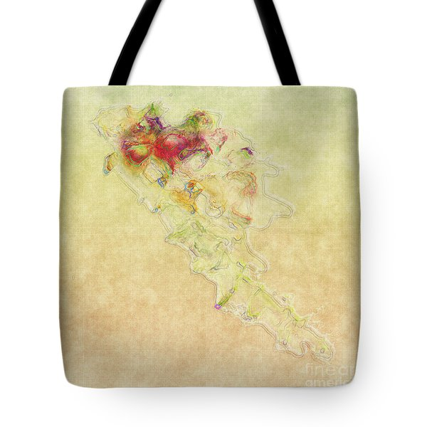 Soul In Flight Tote Bag by RC DeWinter