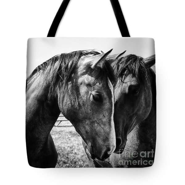 Soul Mates Tote Bag by Toni Hopper