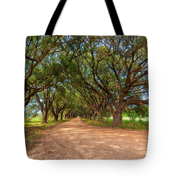 Southern Journey Tote Bag by Steve Harrington