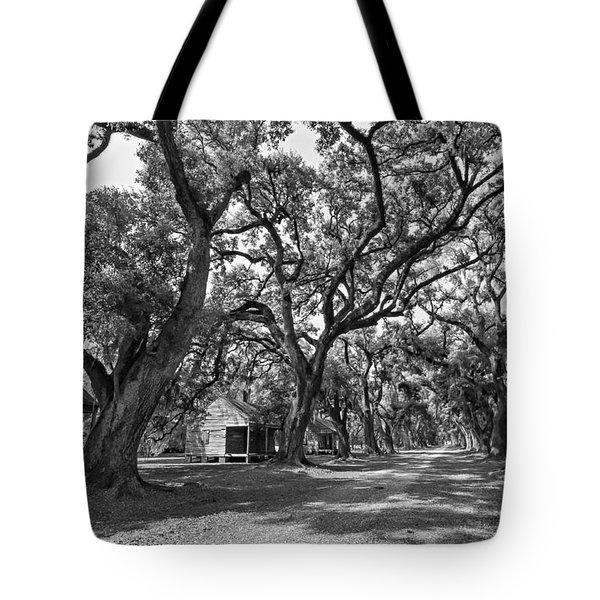 Southern Lane Monochrome Tote Bag by Steve Harrington