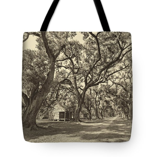 Southern Lane sepia Tote Bag by Steve Harrington