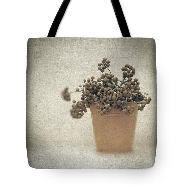 Souvenirs De Demain Tote Bag by Taylan Apukovska