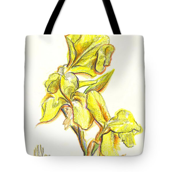 Spanish Irises Tote Bag by Kip DeVore