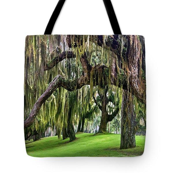 Spanish Moss Tote Bag by Debra and Dave Vanderlaan
