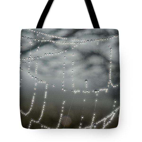 Sparkling Dew In Morning Tote Bag by Dan Friend