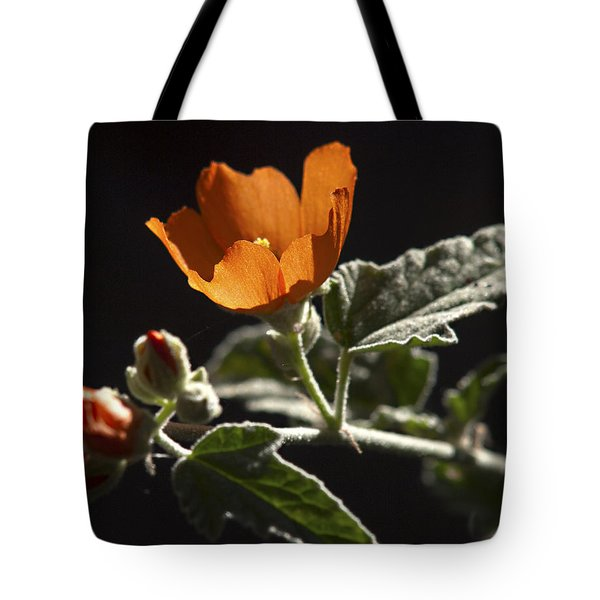 Sphaeralcea Ambigua Tote Bag by Joe Schofield