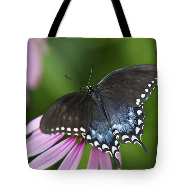 Spice Of Life Butterfly Tote Bag by Christina Rollo