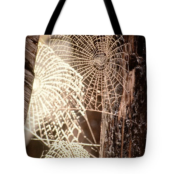 Spider Webs Tote Bag by Anonymous