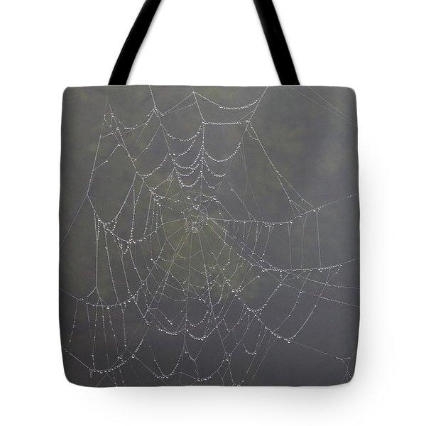 Spiderweb Tote Bag by Allan Morrison